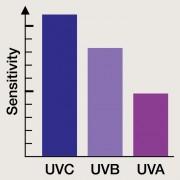 Large bande UV